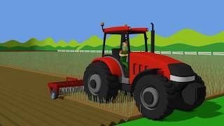 Red Tractor and Combine Harvester - Planting and harvesting grain. Bajki - Traktory