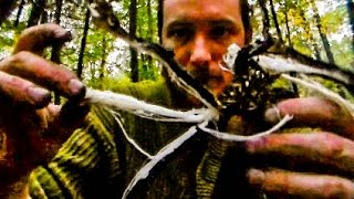 Foraging Edible Plants - Cattail Roots Dinner | Wild Food