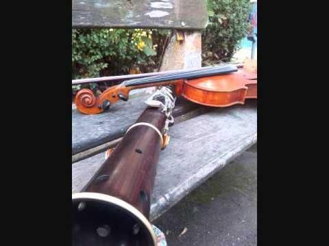 Ciprian Poenar si Traian Covrig - Joc instrumental Cluj