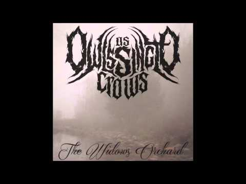 As Owls Sing To Crows - The Widow's Orchard (Album Stream)