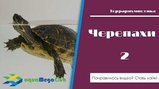 Аквариумные водные черепахи. Часть 2. Обогрев, фильтрация, вентиляция, островок.