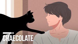 고양이가 당신을 매혹하는 과학적인 이유