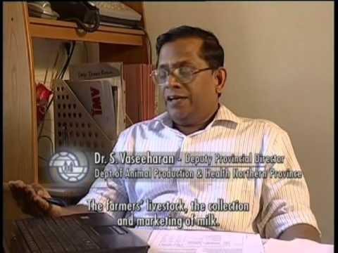 Sri Lanka: Starting Over