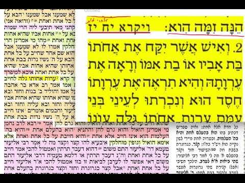 הדף היומי מסכת כריתות דף טו Daf yomi Kereisus Daf 15