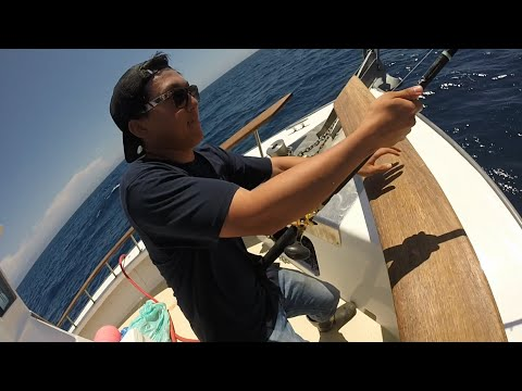 Pacific Dawn Sportfishing Aug 14-15 2015 - 2 day Offshore San Diego