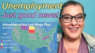 Extra $300/$400 Unemployment Benefits: Requirements, Qualifications and Implementations