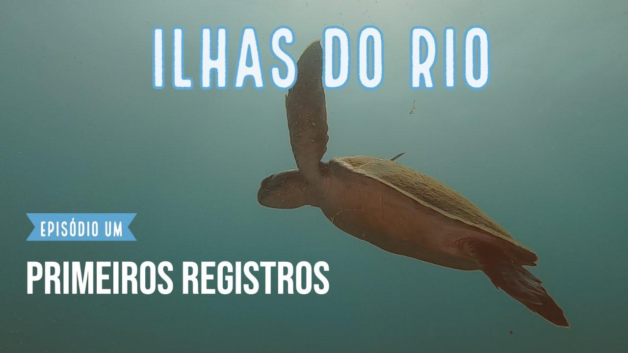 Ilhas do Rio Webserie #1 - Primeiros registros das tartarugas marinhas