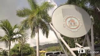 Investing in Jamaica: fDi On Location