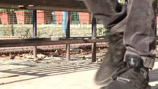 Bebot | the Black eyed peas | dance choreography |Akash gurav