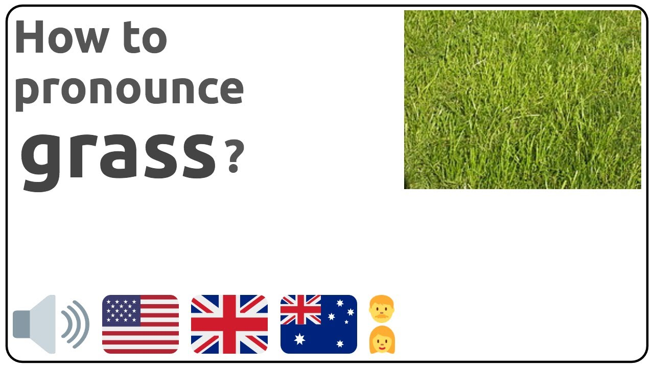 How to pronounce grass in english?