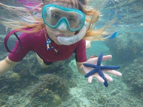 Coral Gardening Island Spirit Fiji 2017