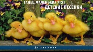 Танец маленьких утят | Детские песенки(Приглашаю друзья на кулинарный сайт http://razzhivina.ru/ более 1000 рецептов! Танец маленьких утят | Детские песенки..., 2015-05-17T06:28:02.000Z)