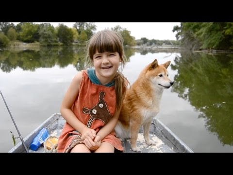 Shiba Inu goes fishing with 7-year-old girl