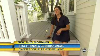Labrador Retriever Keeps Diabetic Girl Alive