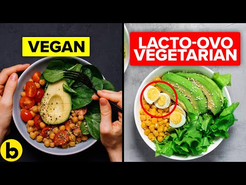 10 Type Of Vegetarian Diets That You Should Know About