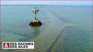 DRDA : De la Vendée au pays nantais - Le passage du Gois