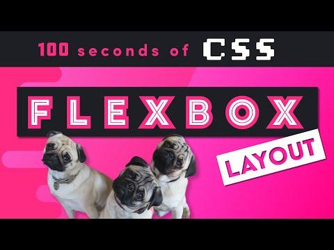 CSS Flexbox In 100 Seconds