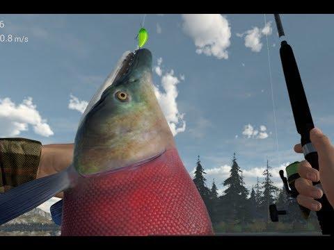 Unique Sockeye Salmon Alaska Fishing Planet (pc version)