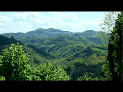 Relaxing View of a Natural Reserve in Tuscany - Zenitude Experience