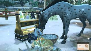 Alicia online- christmas event/ how to make your horses love you