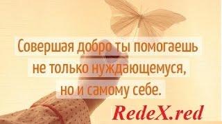 RedeX.red Андрей Головащенко - 19 12 2016