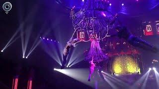 """Знаменитый """"Королевский цирк"""" привёз своё шоу в Новосибирск"""