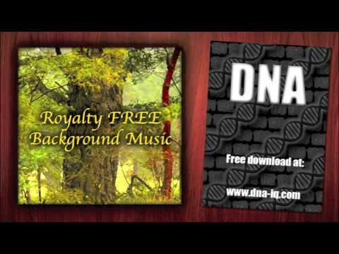 Bass and Guitar - Royalty Free Background Music