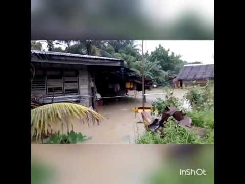 Baha sa tapsan Quezon Palawan 😱😒 Ung tipong basakan naging dagat at maraming hayop namatay kalabaw