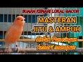 Masteran Ampuh Kenari Suara Kenari Lokal Gacor Untuk Pancingan Dan Masteran Kenari Manapun  Mp3 - Mp4 Download