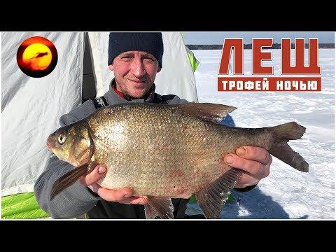 Ловля леща ночью / Рыбалка в палатке / Лещ весной / Яузское водохранилище / Пудыши