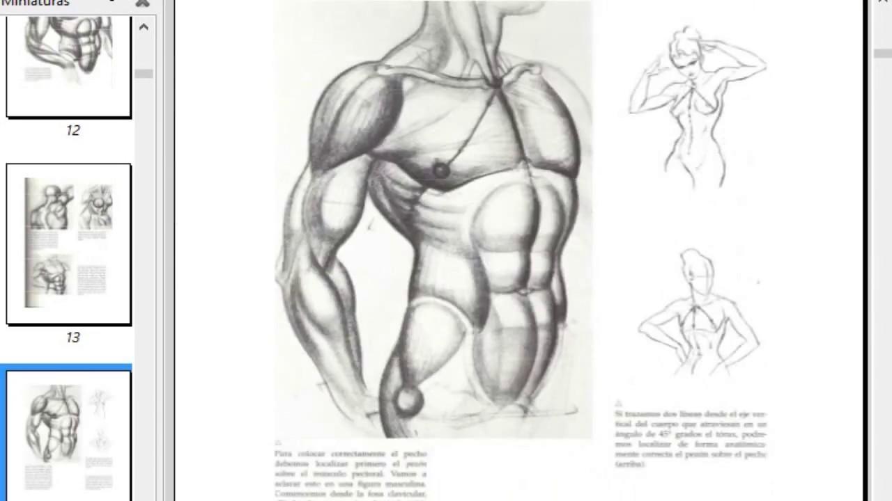 el dibujo de la figura a tu alcance pdf - YouTube