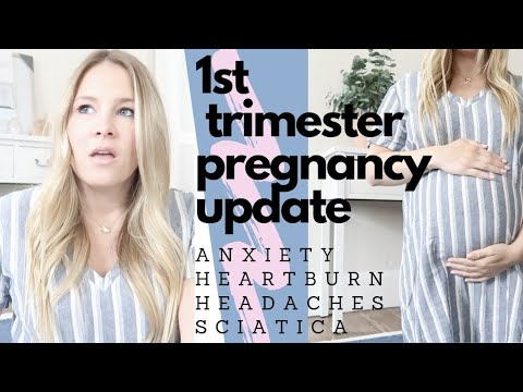 FIRST TRIMESTER PREGNANCY UPDATE 2019 | anxiety, heartburn, sciatica  | tips & recommendations