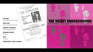 The Velvet Underground: Psychedelic Sounds from the Gymnasium