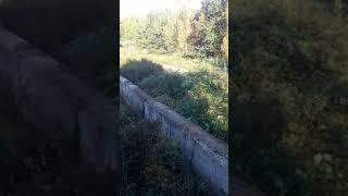 Очистка от ила пруда отстойника на очистных сооружениях. Московская область. 2019
