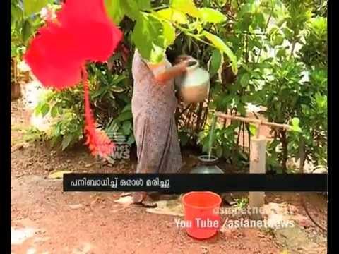Dengue Fever spread in Kerala കേരളംഡെങ്കിപ്പനിയുടെ ഭീ�...