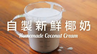 【Eng Sub】自製新鮮椰奶/椰奶優格  椰子肉是寶別浪費  全植物安心食材  Homemade Coconut Cream/ Coconut Yogurt Recipe