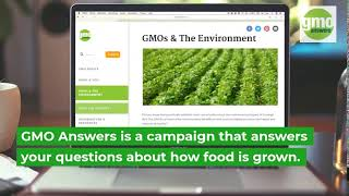 What is GMO Answers?