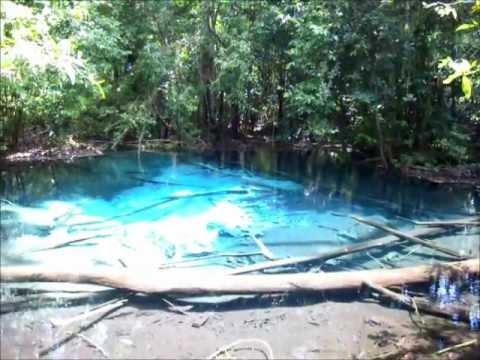 สระมรกต กระบี่ - Emerald Pool, Krabi