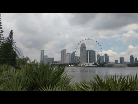 Gardens by the Bay View of Singapore