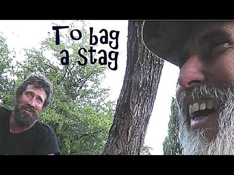 To Bag a Stag - 2017