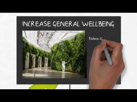 The benefits of living green walls youtube for Green wall advantages