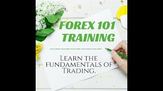 Forex 101: How to Set Up Broker account