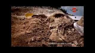 Documentaire: Vikings, les Mystères d'un Massacre