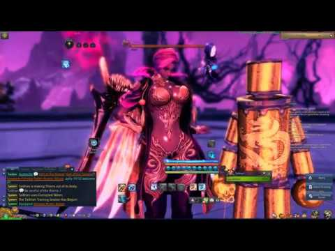 Blade And Soul Na Frost Force Master Awaken Skill Rotation Youtube