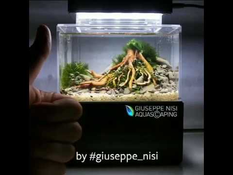 Mini Aquarium World Smallest Aquarium With Sump And Led Complete