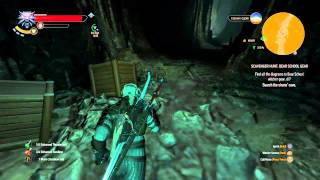 The Witcher 3: Wild Hunt location find ursine crossbow LEVEL 29