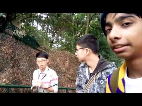Hong Kong Lion Rock We Climbed
