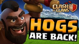 HOGS ARE BACK! | Clash of Clans