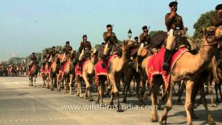 Modern Indian Army still rides on camel back : lest the old traditions die!