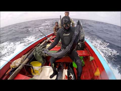 Spearfishing Cabo Verde